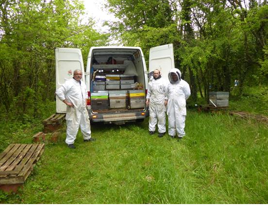 déplacement des ruches